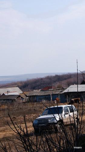Стригай. Базарно-Карабулакский район. Саратовская область.