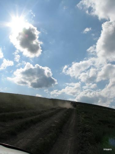 """Урочище """"Буданова гора"""". Саратовский район. Саратовская область."""
