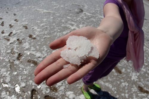 Кристаллы соли. Природный парк Эльтонский. Озеро Эльтон. Палласовский район. Волгоградская область.